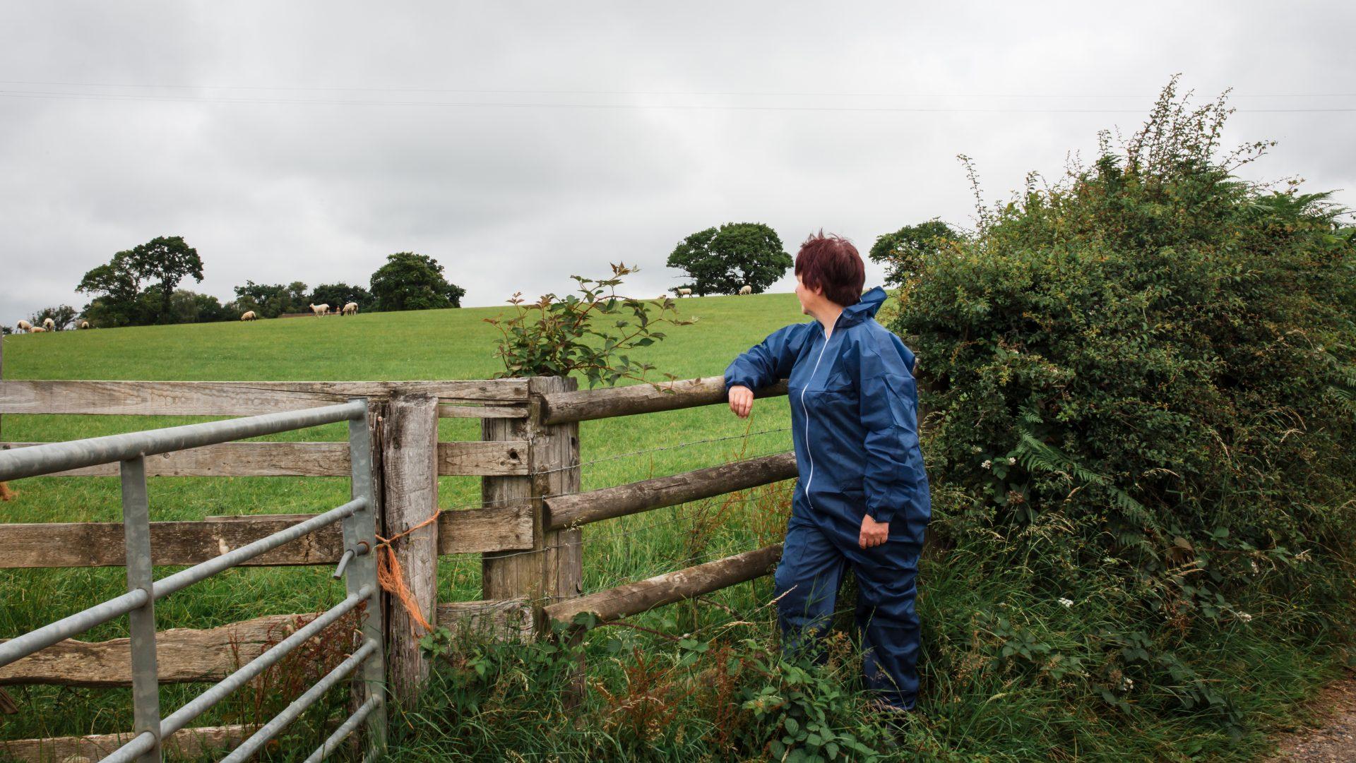 Farm Animal Welfare Consulting Ltd
